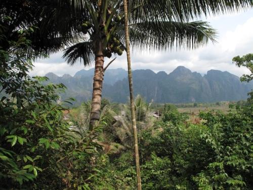 """Jungle Mountains"" Canon G10"