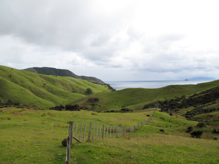 We did a hike to access some of the bays around the northern point