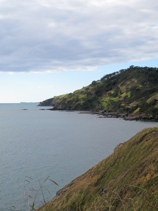 Taken off the side of the gravel road on the way to the northern tip of the coromandel