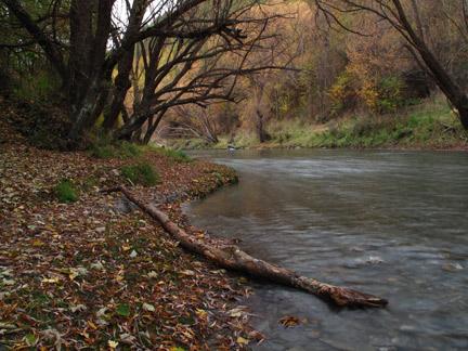 River Comp
