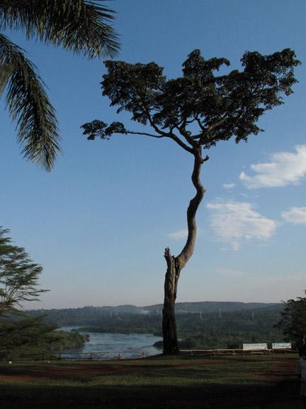 The Nile!