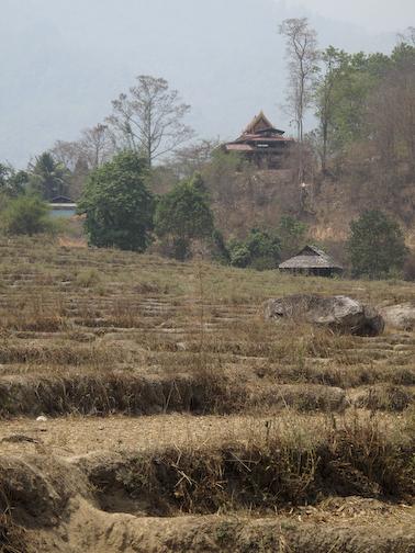 Looking Back At Village