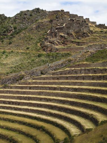Picas Terraces