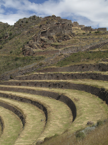 Pisac Terraces and City