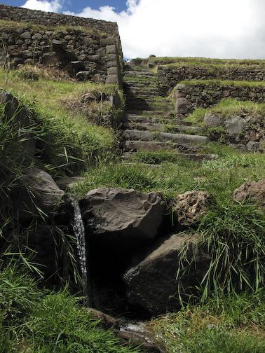 Stairway separating terraces.