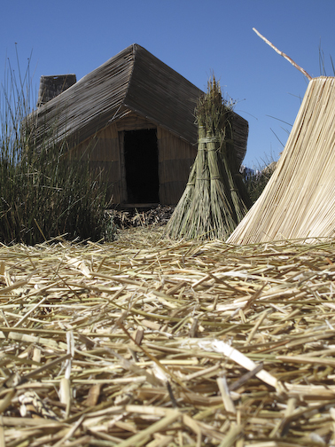 Totora Reed House