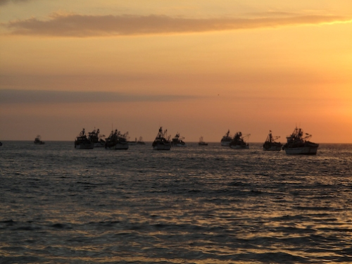 Mancora Sunset Boats