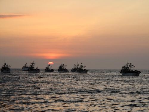 Mancora Sunset Boats